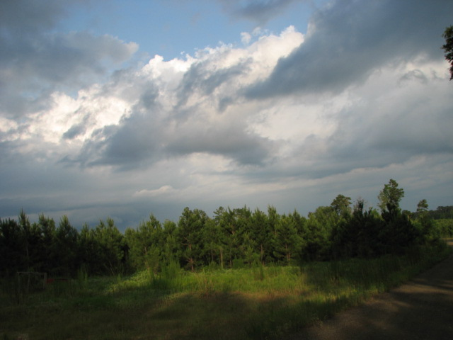 Land for sale in 00 Hwy 190W, Jasper, Texas ,75951