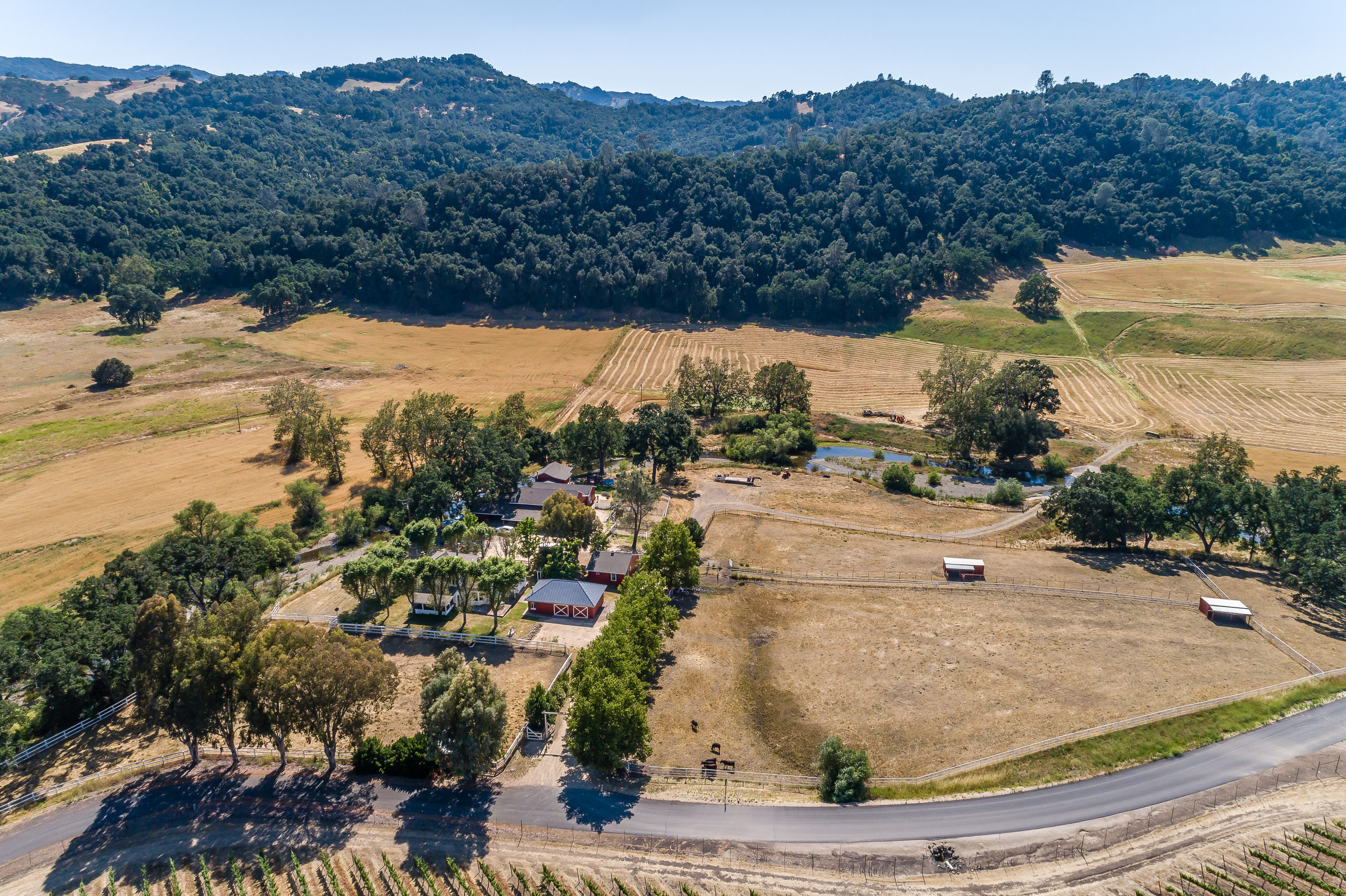 Single Family Home for sale in 335 Cypress Mountain Drive, Paso Robles, California ,93446