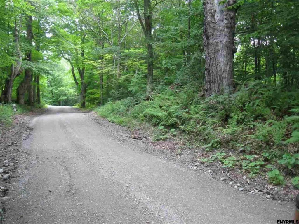 Land for sale in 367 BLACK RIVER RD, Stephentown, NY ,12168