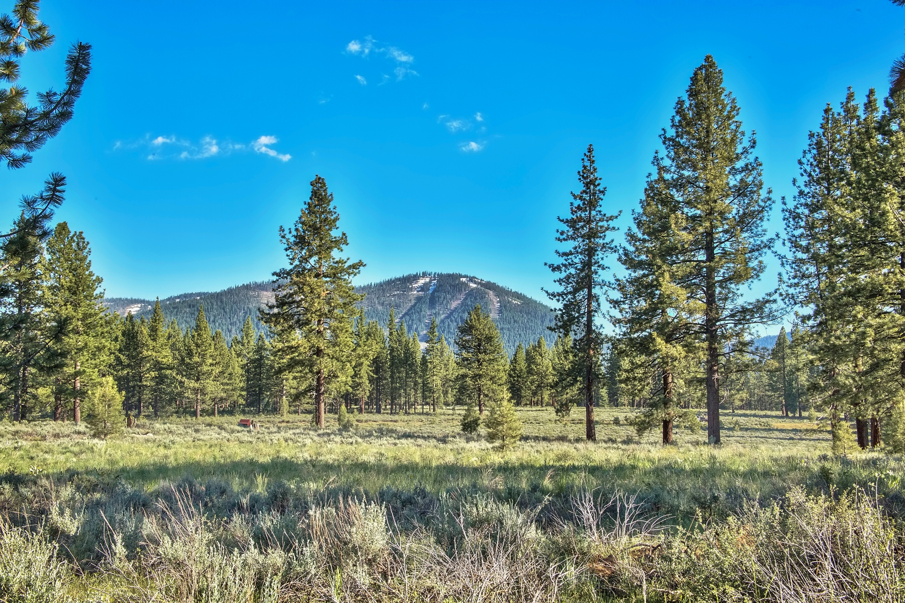 Land for sale in 9701 North Shore Blvd. 9701 Highway 267, Truckee, California ,96161