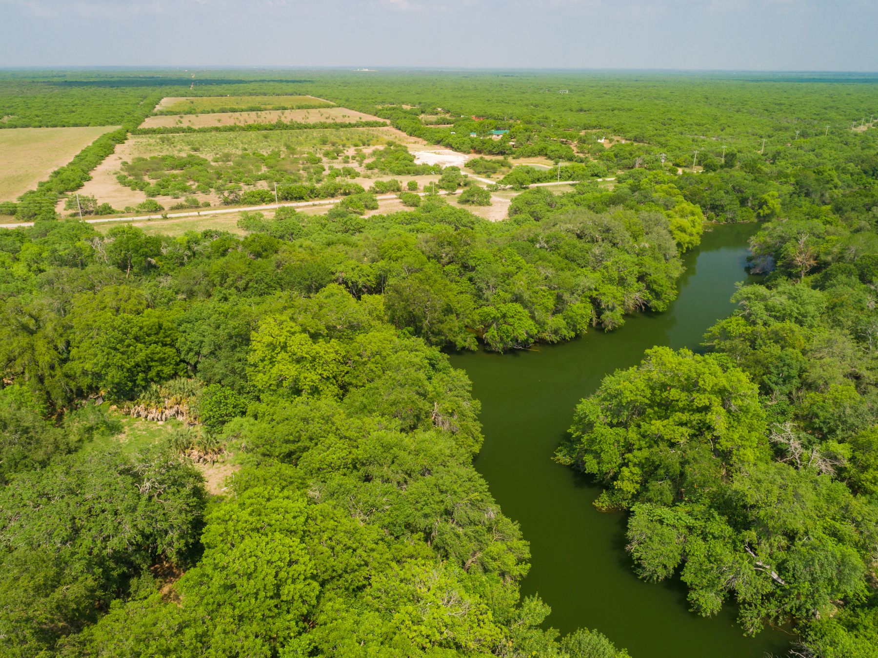 Farms & Ranches for sale in 1281 Bermuda County Road, Carrizo Springs, Texas ,78834
