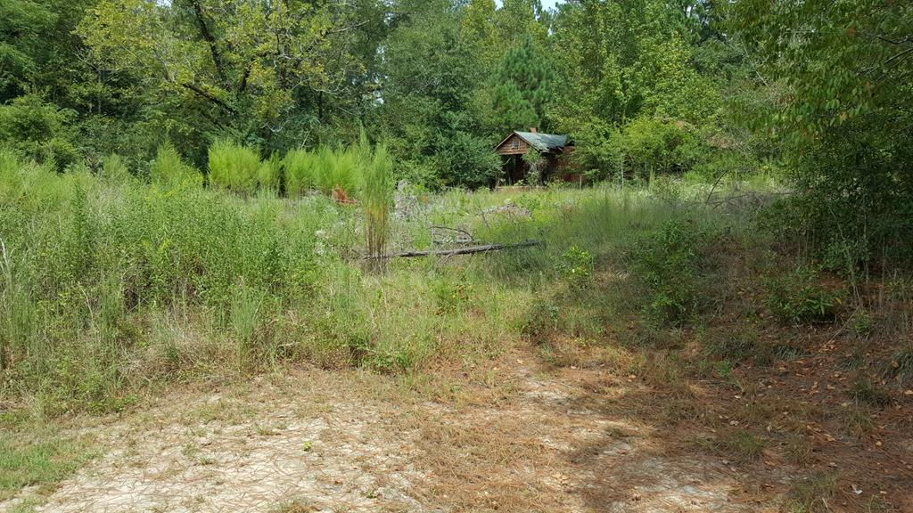 Farms & Ranches for sale in 3822 Old Gordon Road, Dry Branch, Georgia ,31020