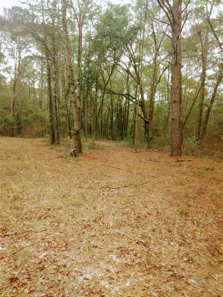 Land for sale in Fairchild Dr, Crestview, Florida ,32539