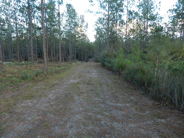 Land for sale in Lot 137 10 Mile Road, Milton, Florida ,32571