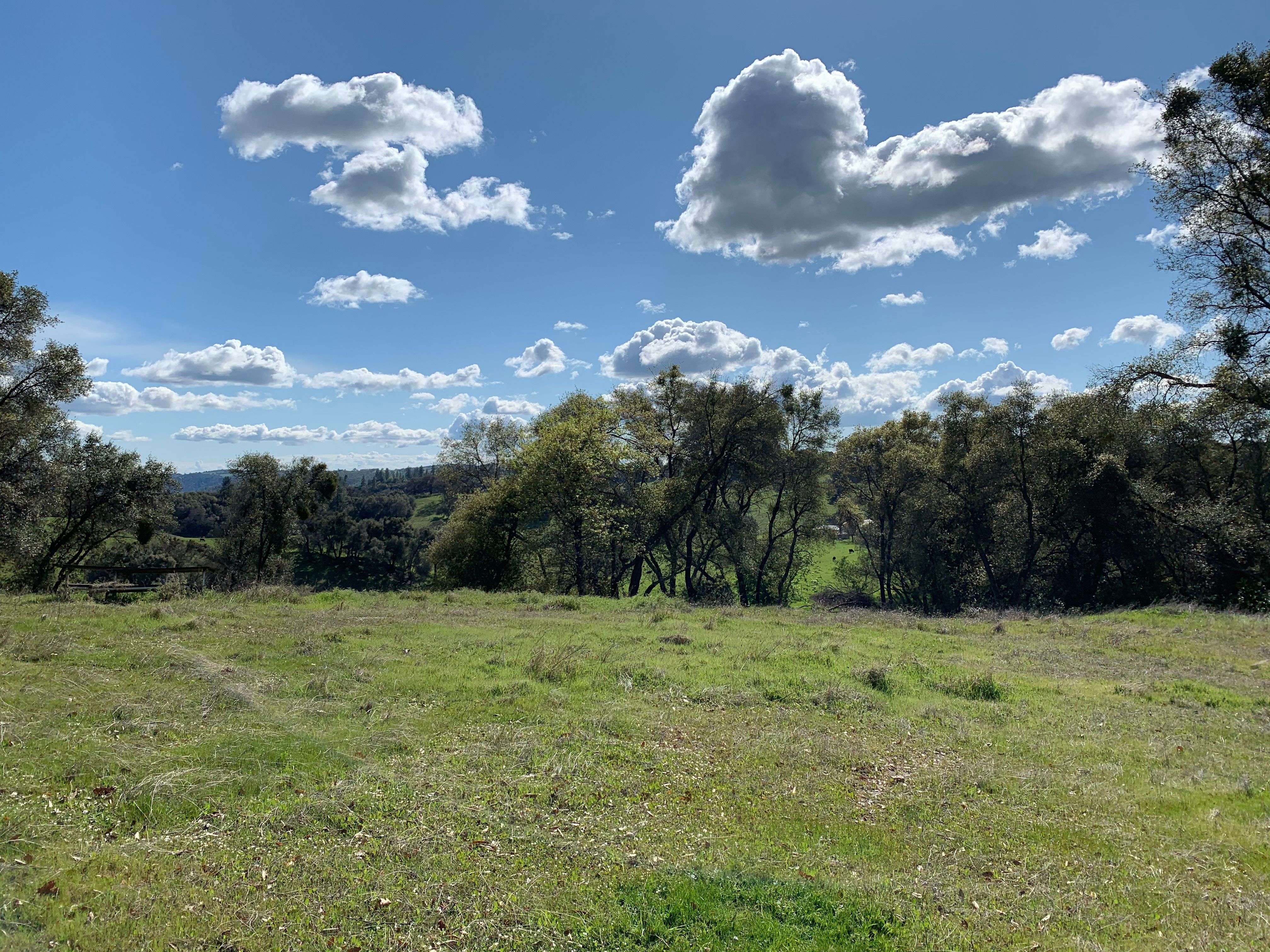 Residential Lots & Land for sale in 15400 Gina Lynn Court, Jackson, California ,95642