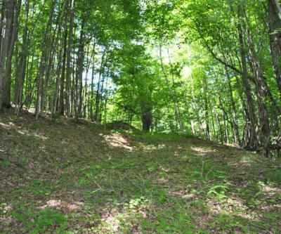 Land for sale in 20 Star Road, Kortright, NY ,13750