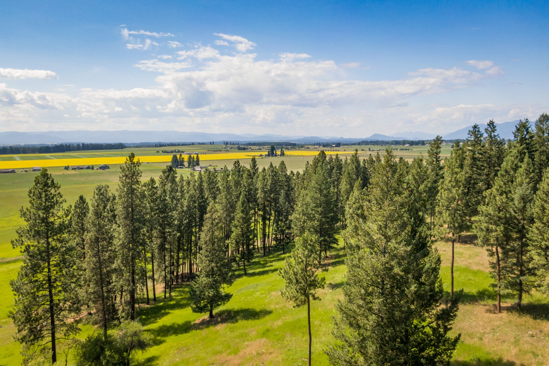 Land for sale in 515 Fairview Crossroad, Kalispell, Montana ,59901