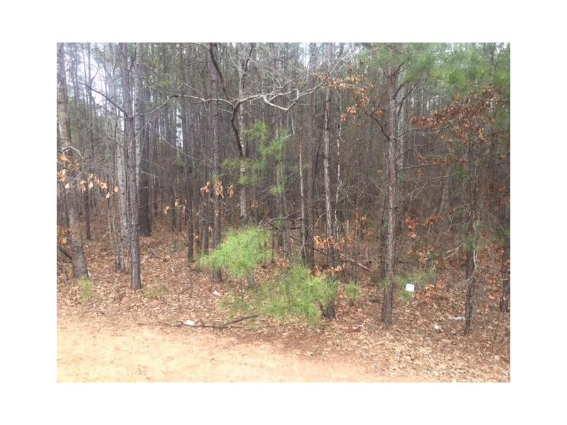 Land for sale in 6 Highway 219, Franklin, Georgia ,30217
