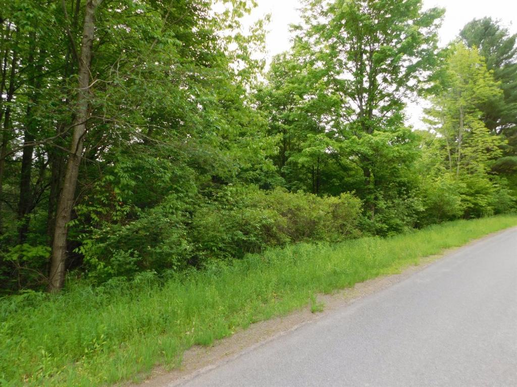 Land for sale in 0 Merriman Hill Road, Unadilla, NY ,13849