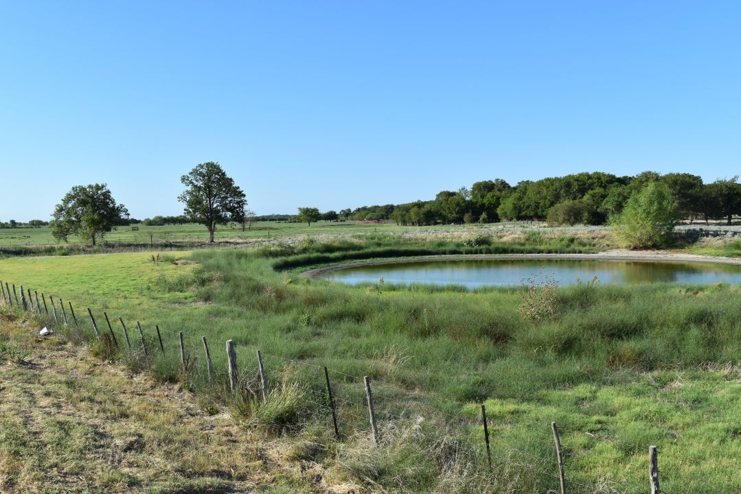 Land for sale in TBD County Line Rd, Mart, Texas ,76664