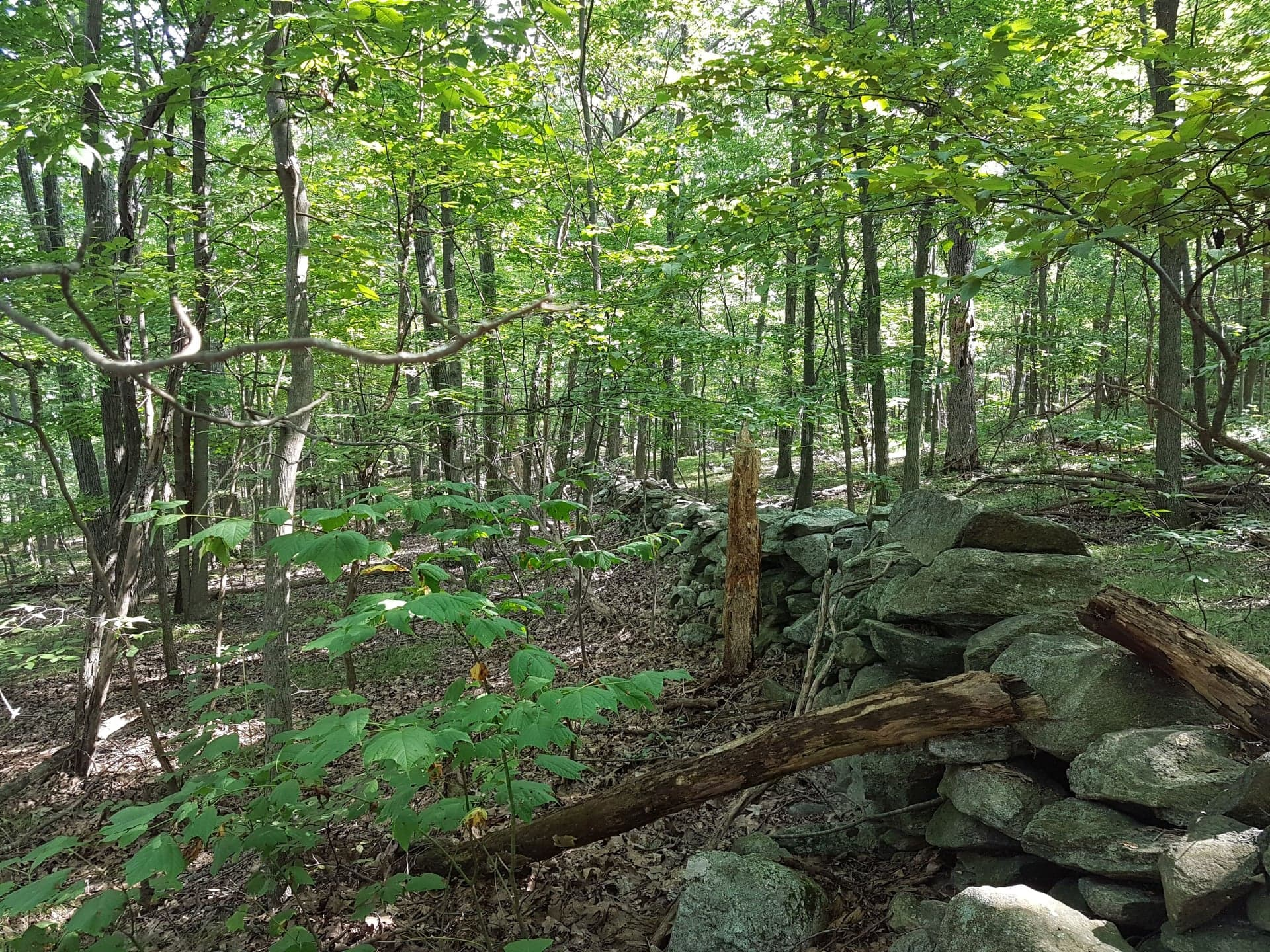 Land for sale in 390 Hosner Mountain Rd, East Fishkill, NY ,12582