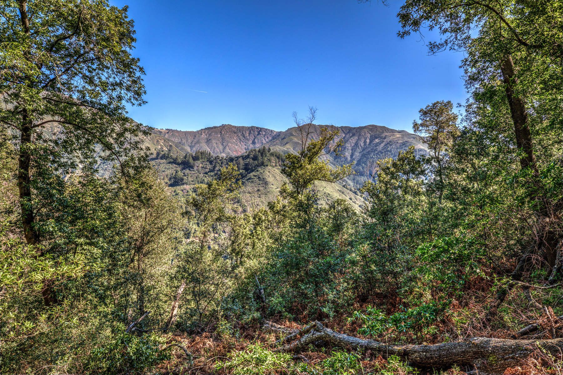 Land for sale in 46151 Clear Ridge Road, Big Sur, California ,93920
