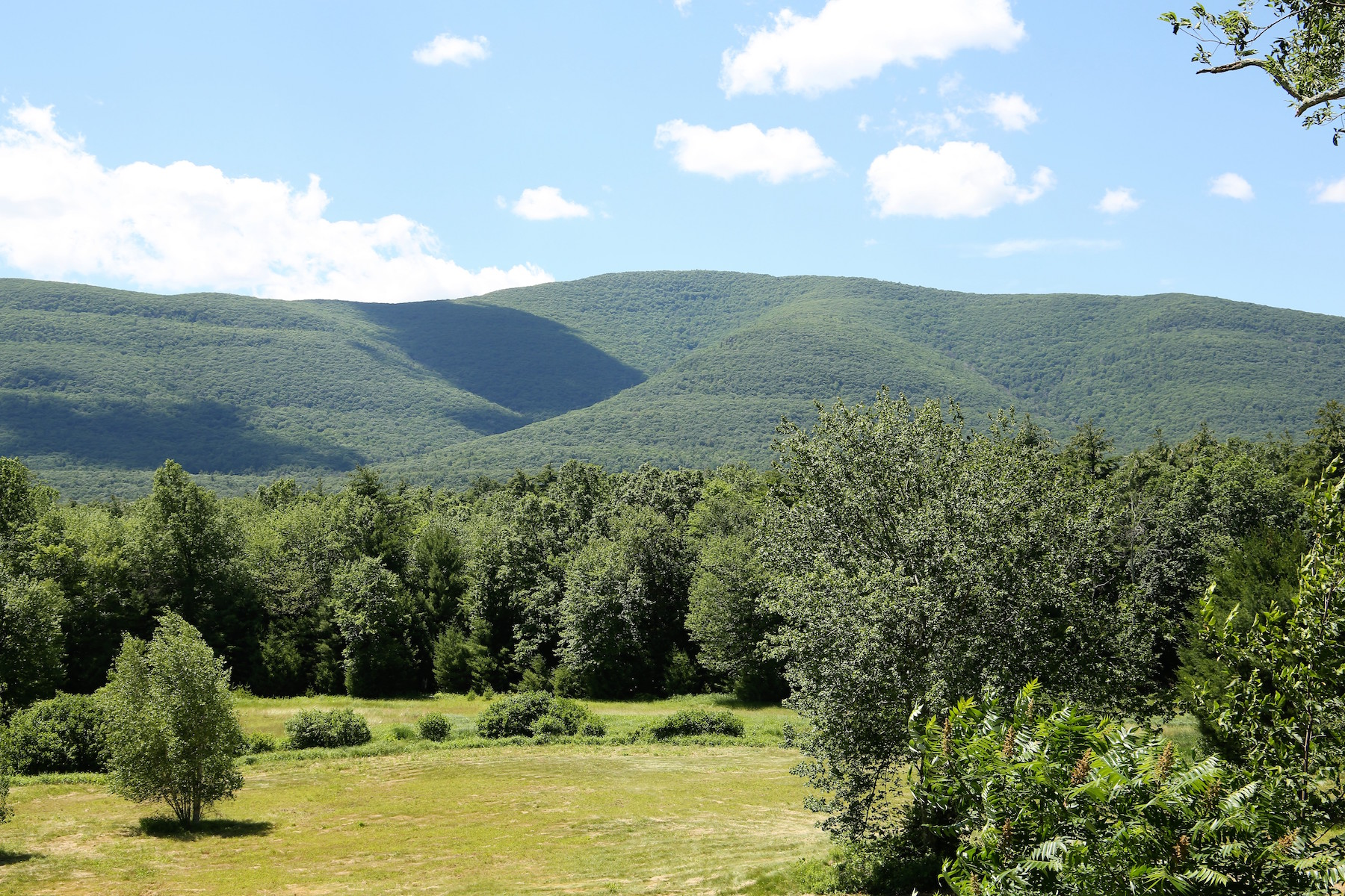 Land for sale in 471 Band Camp Road, Saugerties, NY ,12477