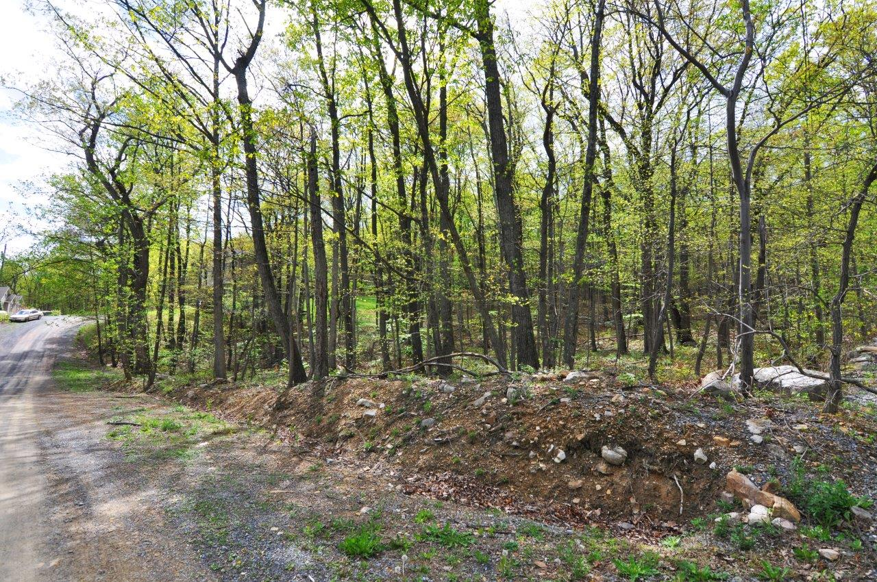 Land for sale in Bluebird Drive - Lot 3, Winchester, Virginia ,22602