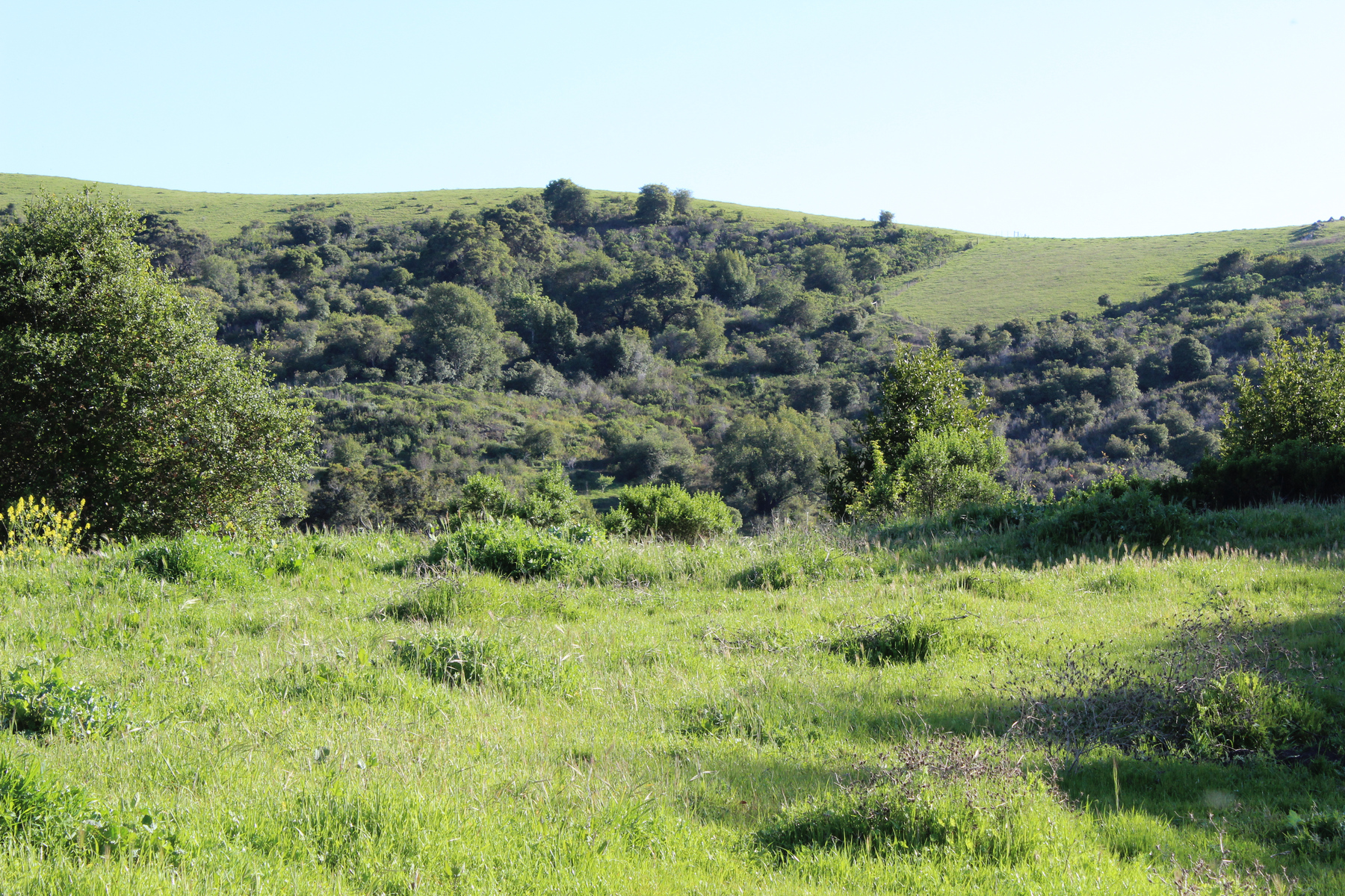 Land for sale in 2510 Noel Way, Cambria, California ,93428