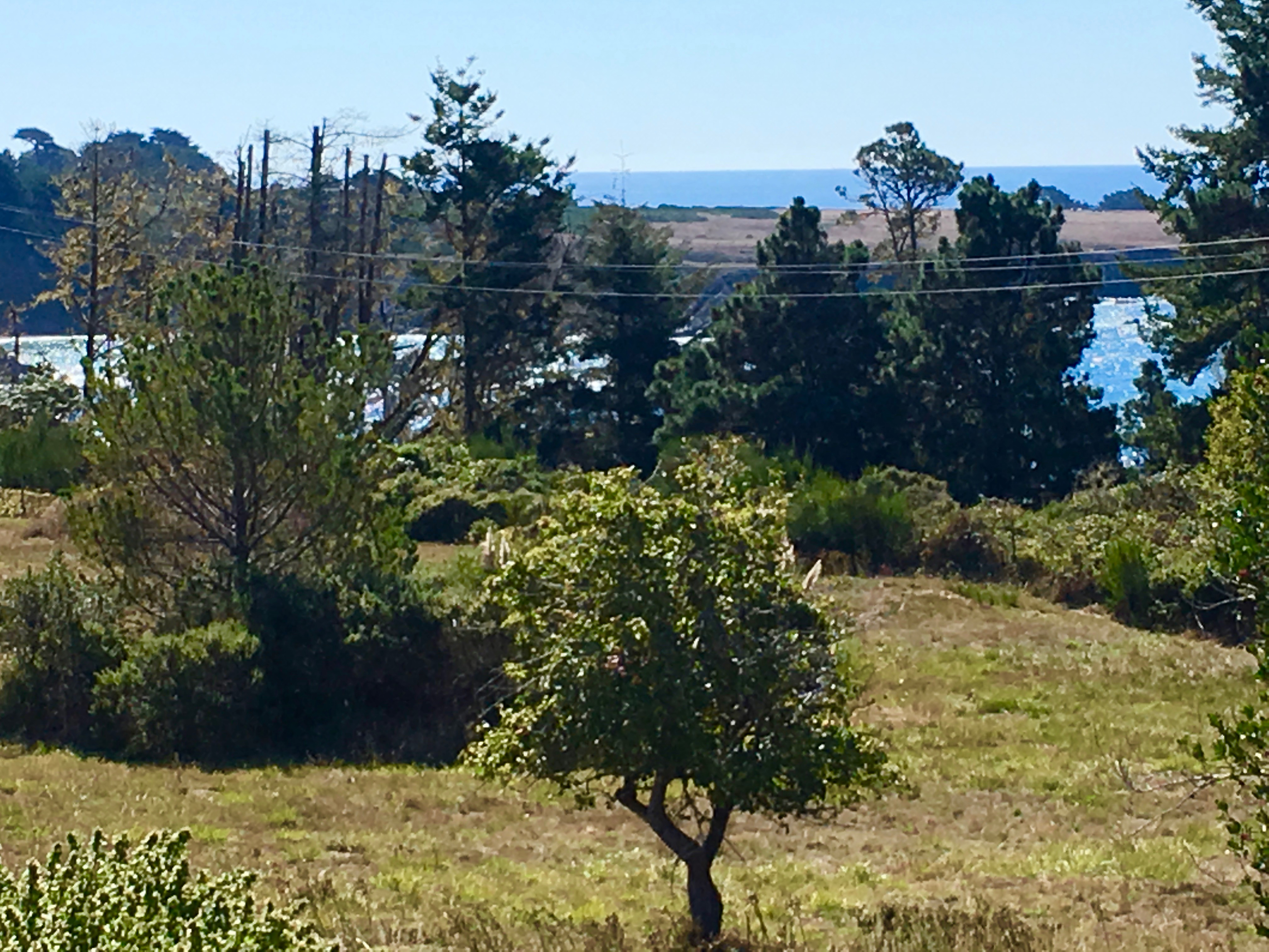 Land for sale in 44831 Baywood Drive, Mendocino, California ,95460