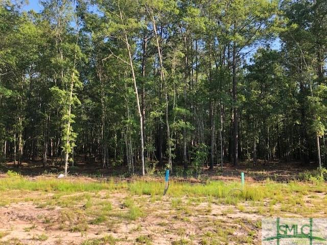 Land for sale in Osteen Road Lot 6, Bloomingdale, Georgia ,31302