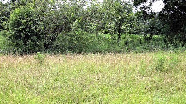 Land for sale in 6210 Newton Road, Albany, Georgia ,31701