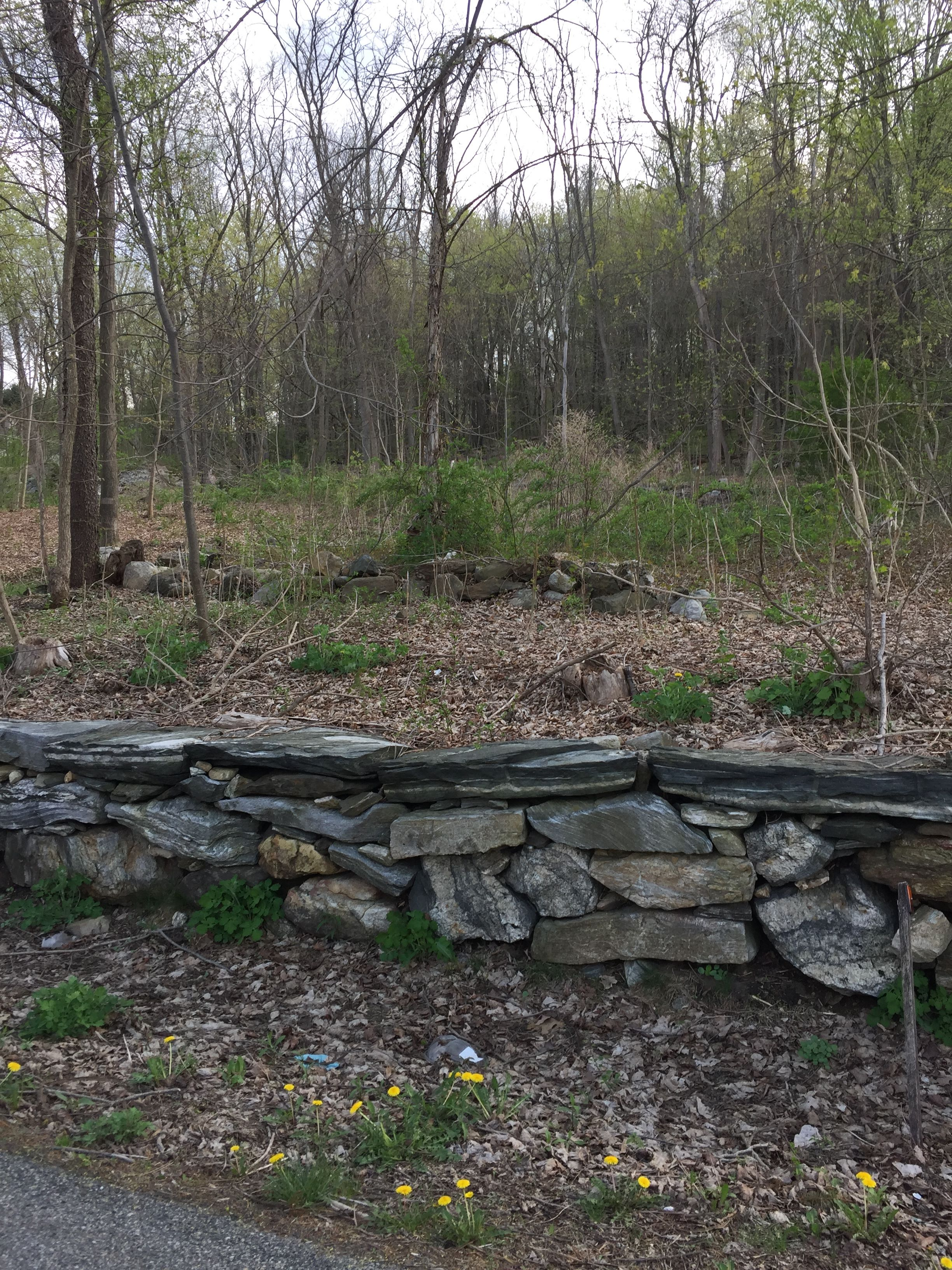 Land for sale in 155 Route 164, Patterson, NY ,12563