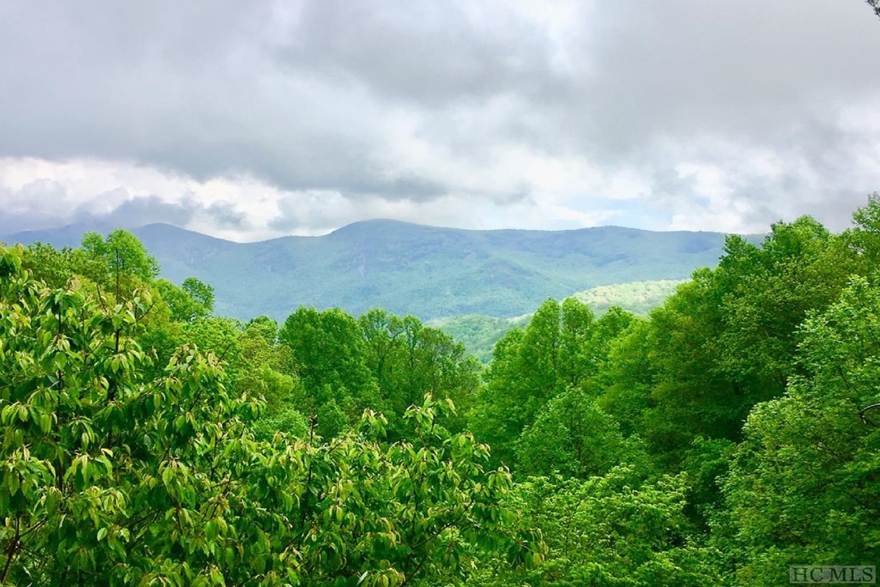 Land for sale in Osage Lane, Scaly Mountain, NC ,28775