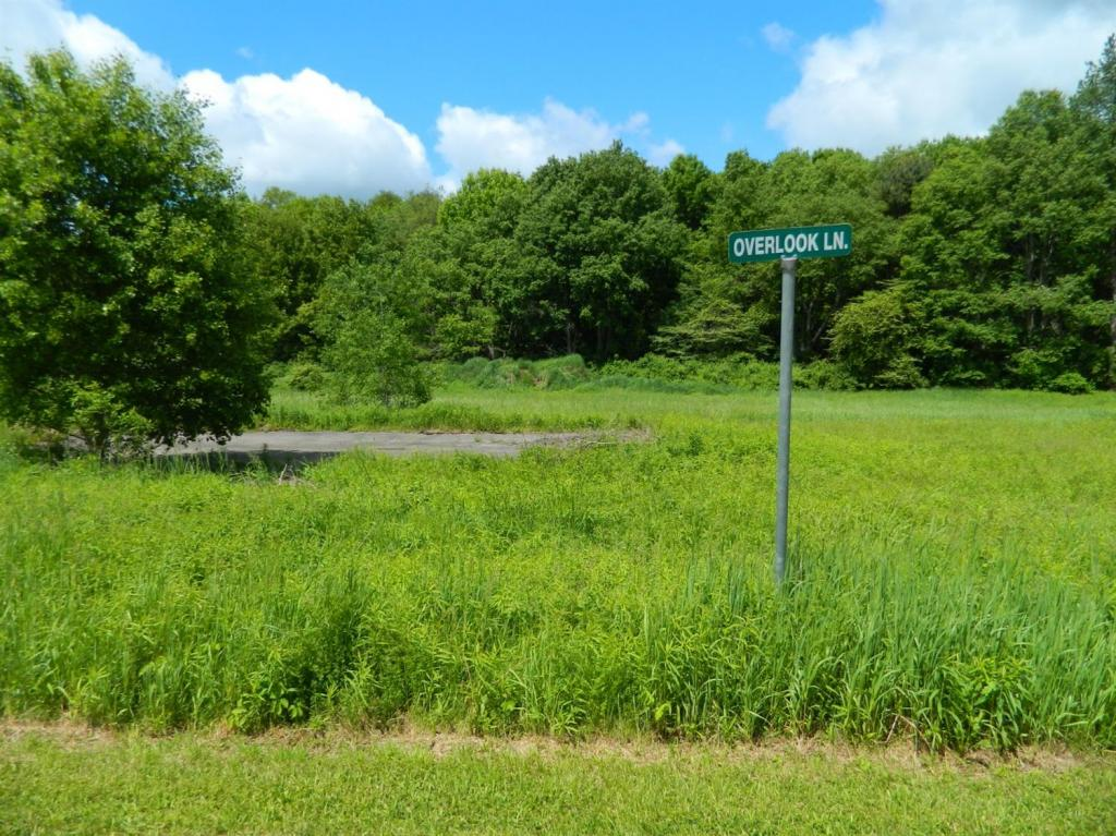 Land for sale in 102 Overlook Drive, Unadilla, NY ,13849
