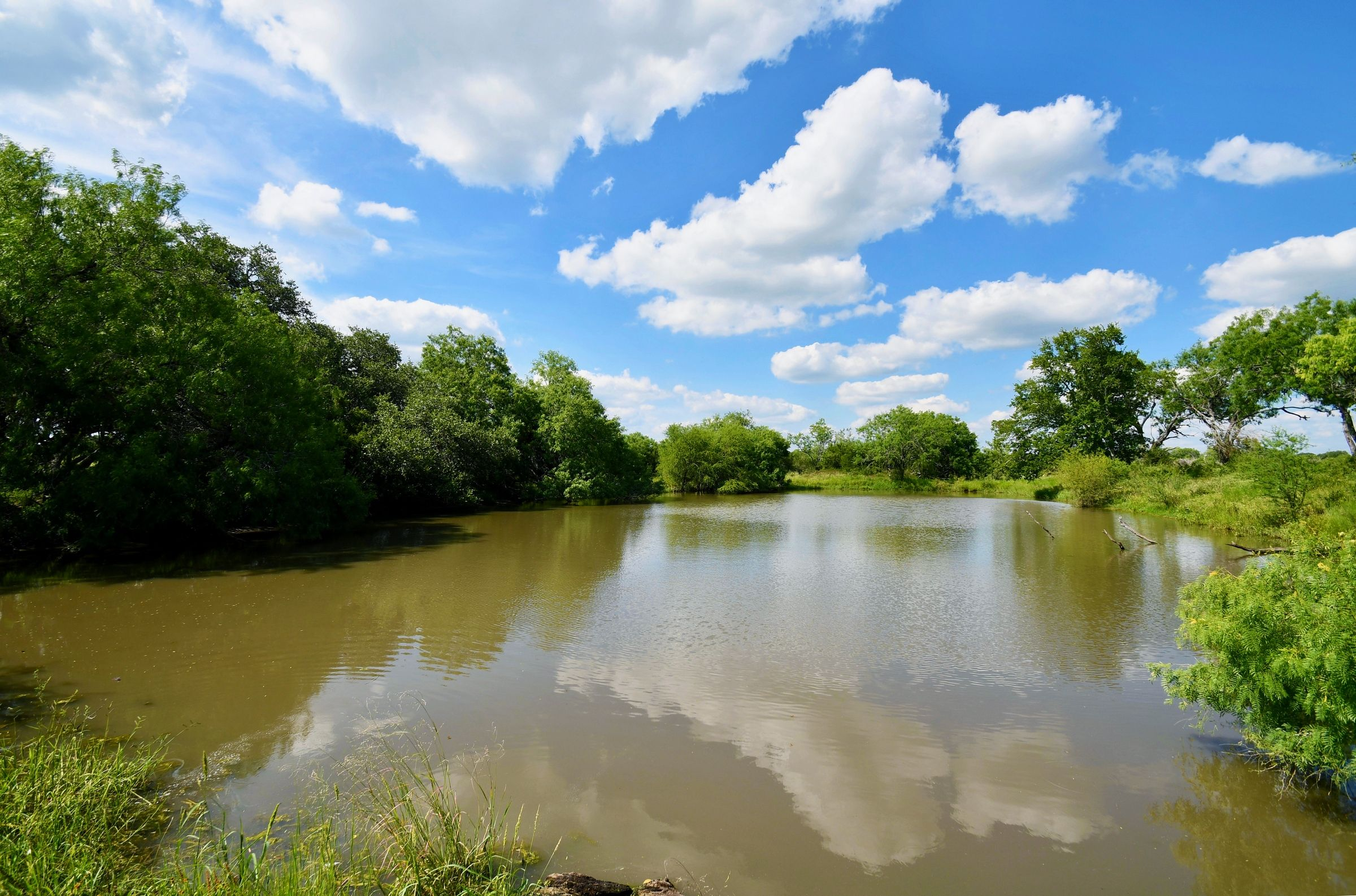 Farms & Ranches for sale in 3,865+/- Acres / Bee County, Kenedy, Texas ,78119