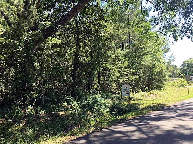 Residential Lots & Land for sale in Whitehead Road, Silsbee, Texas ,77656