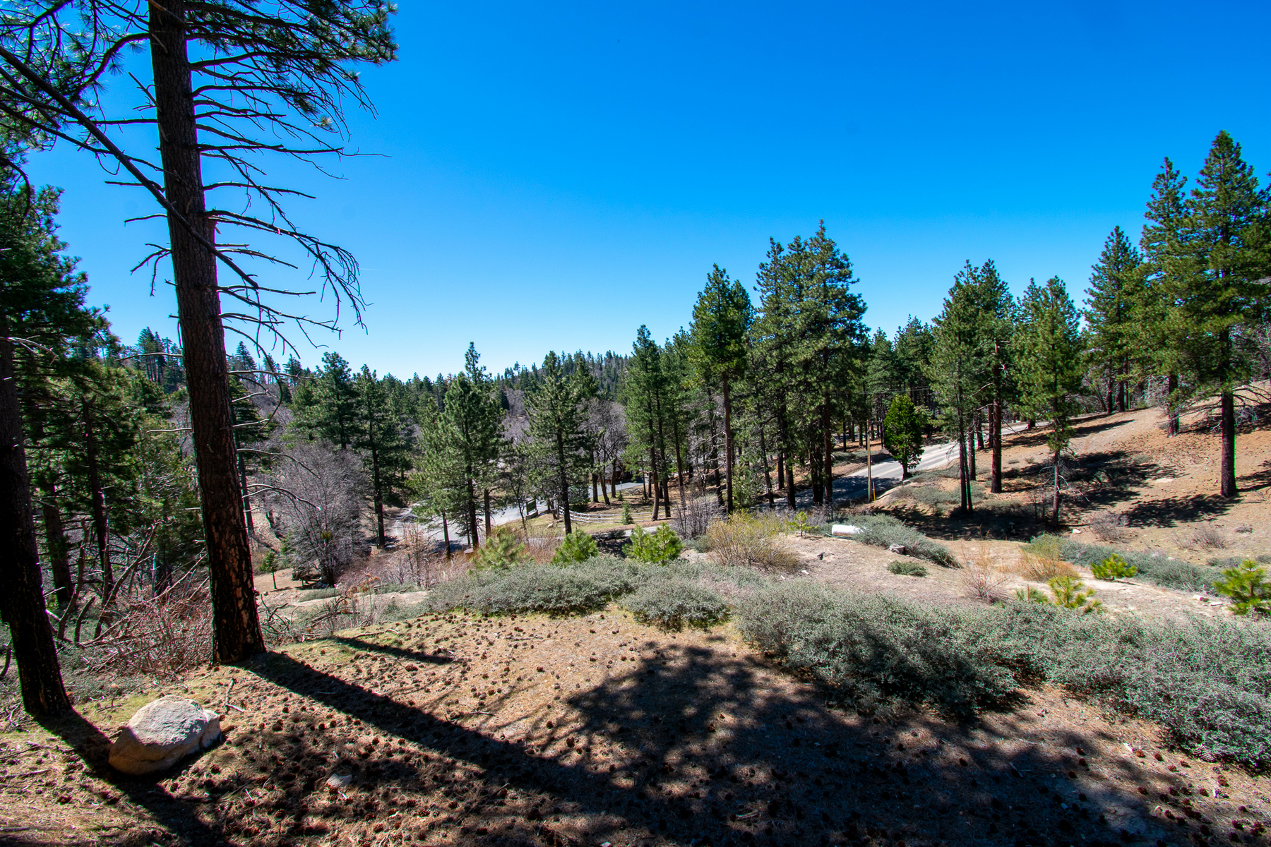 Land for sale in 32274 N. Green Valley Lake Road, Green Valley Lake, California ,92382