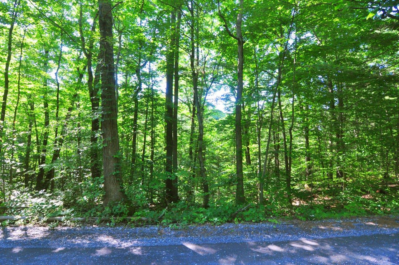 Land for sale in Drummer Hill Road - Lot 293A, Front Royal, Virginia ,22630