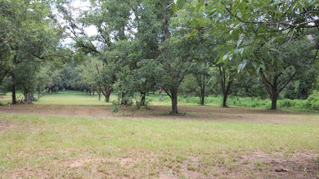 Land for sale in 2624 Lonesome Road, Albany, Georgia ,31701