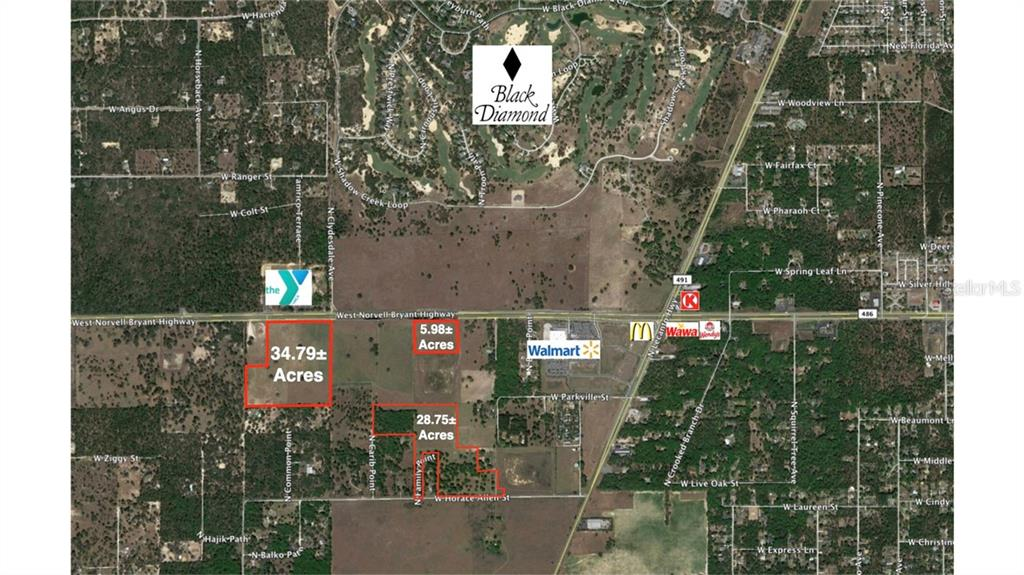 Land for sale in 4134 Norvell Bryant HIGHWAY, Lecanto, Florida ,34461