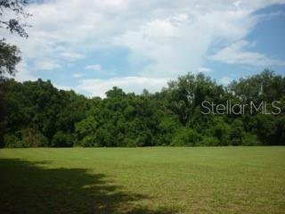 Land for sale in 11315 301st HIGHWAY, Thonotosassa, Florida ,33592