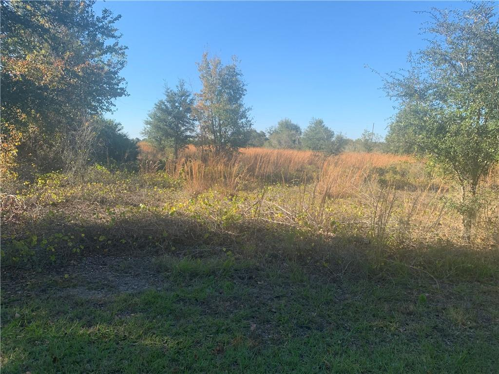 Land for sale in Fish Branch ROAD, Zolfo Springs, Florida ,33890