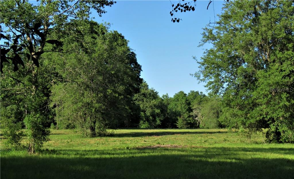Land for sale in Hwy 318, Citra, Florida ,32113