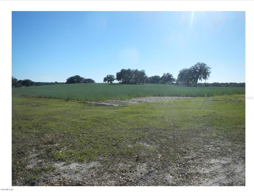 Land for sale in 00 Shorewood DRIVE, Dunnellon, Florida ,34431