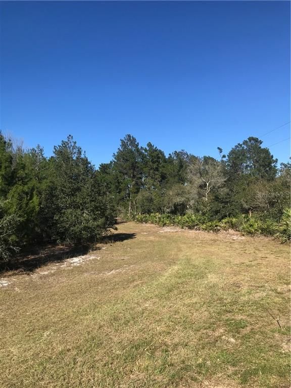 Land for sale in 26735 Her Mar ROAD, Paisley, Florida ,32767