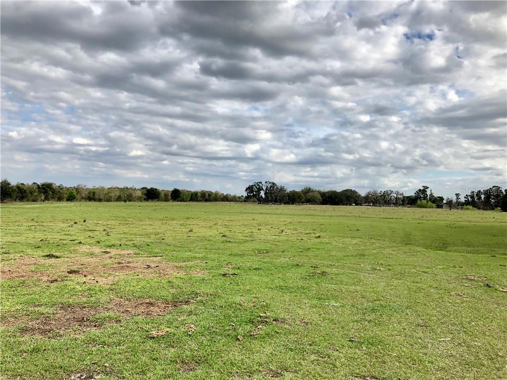Land for sale in 33100 Taylor Grade ROAD, Parrish, Florida ,34219