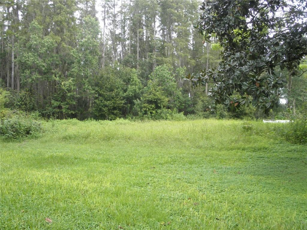 Land for sale in 915 Lake Brooker COURT, Lutz, Florida ,33549