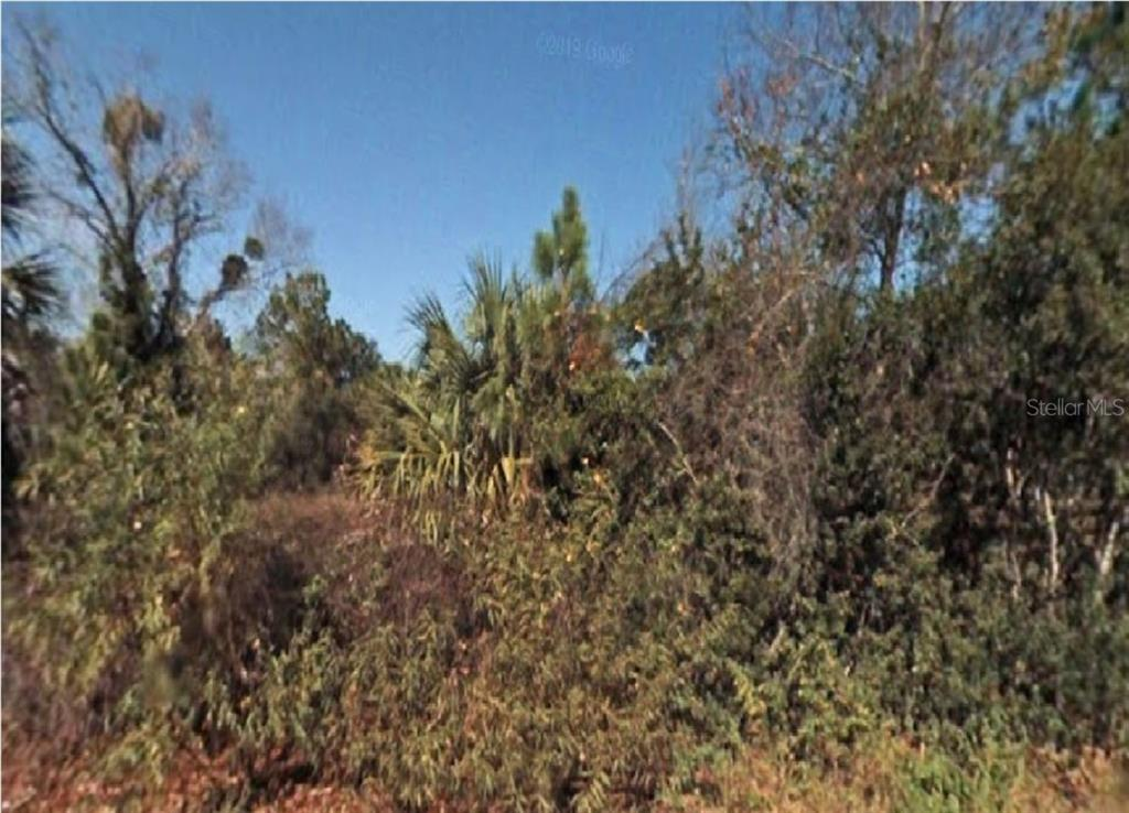 Land for sale in 116 Laisy DRIVE, Georgetown, Florida ,32139