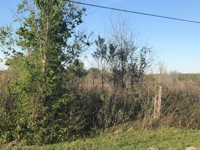 Land for sale in Cr48, Center Hill, Florida ,33514