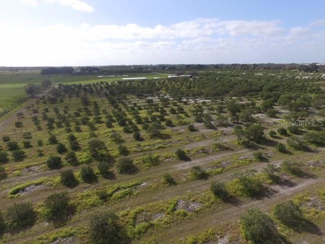 Land for sale in Shreck ROAD, Bartow, Florida ,33830