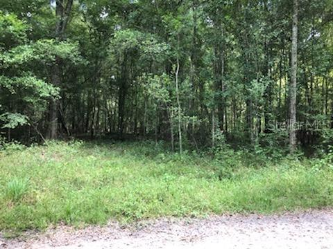 Land for sale in Unassigned Unassigned, Old Town, Florida ,32680