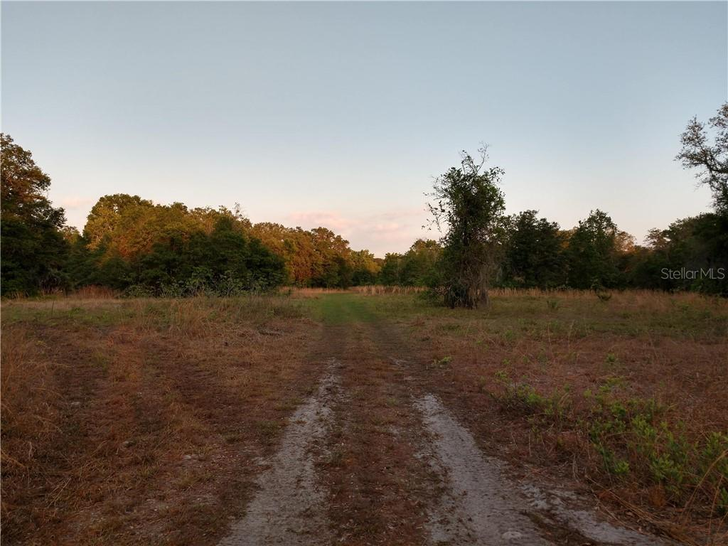 Land for sale in , Dover, Florida ,33527