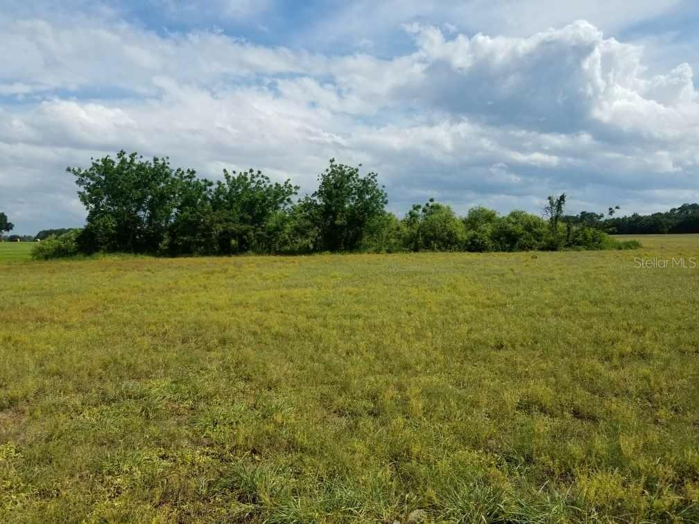 Land for sale in Pine Island ROAD, Clermont, Florida ,34711