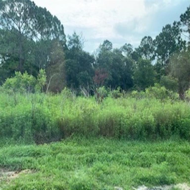 Land for sale in 1537 Eloise COURT, Poinciana, Florida ,34759